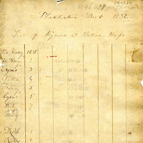 Journal of Robert Barnwell Plantations, 1838 - 1859
